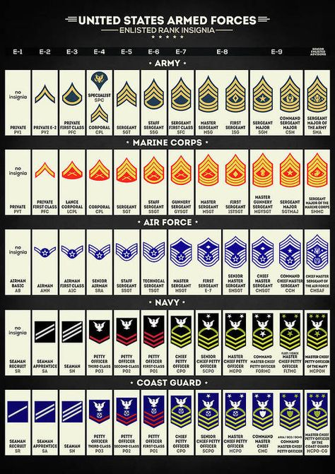 Us Navy Officer Ranks, All Military Ranks, Navy Ranks, Marine Corps Ranks, Military Insignia, Military Life, Military History, Navy Military, Marine Corps Uniforms