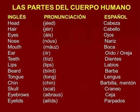 190 Ideas De Estudiar Vocabulario En Ingles Vocabulario Ingles Español Como Aprender Ingles Basico