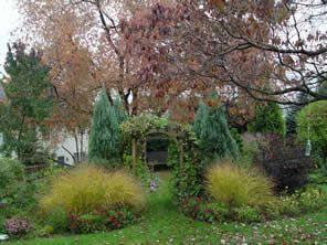 Fighting The Fungus Gnats Garden Housecalls Shade Garden Plants