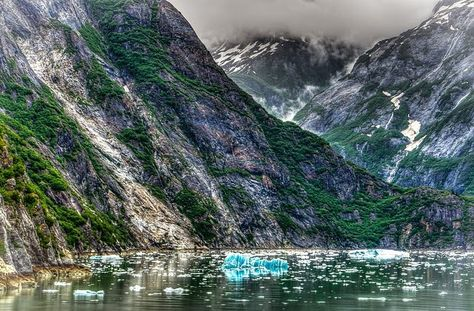 S.E Fish Report 06-19-12   Juneau   Alaska Fly Fishing Goods