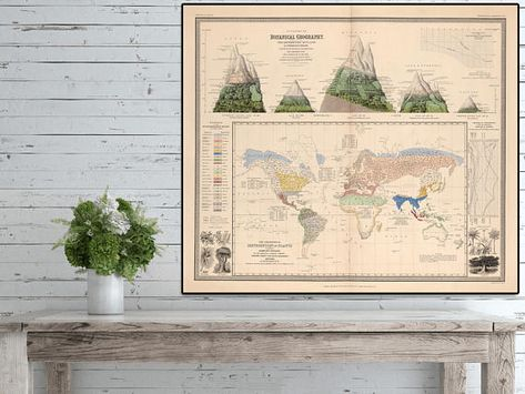 Botanical Geography 1845 Coloured world map Distribution of Plants