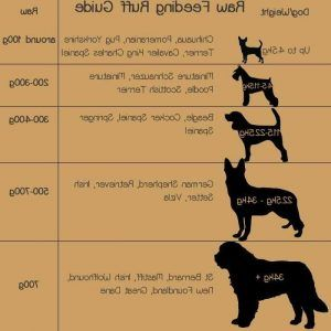 Pin On The Loyal Pets