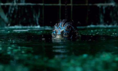 the shape of water online free streaming