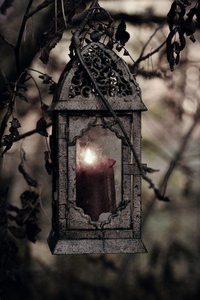 Belladonna's Garden:  In #Belladonna's #Garden ~ Lantern.