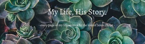 Lisa Health Update (28-Mar-17) – My Life, His Story