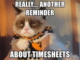 Image Result For Timecard Reminder Meme Halloween Memes Grumpy Cat Funny Halloween Memes