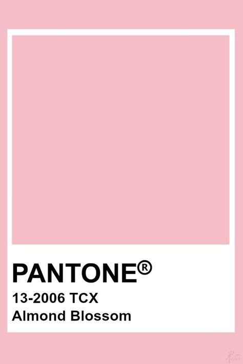 Pantone Almond Blossom