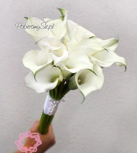Biel Ecru Bukiet Slubny Kwiaty Cantedeskia Kantadeska Cantadeska Kallijka Flowers Bouquet Bouquet Flowers