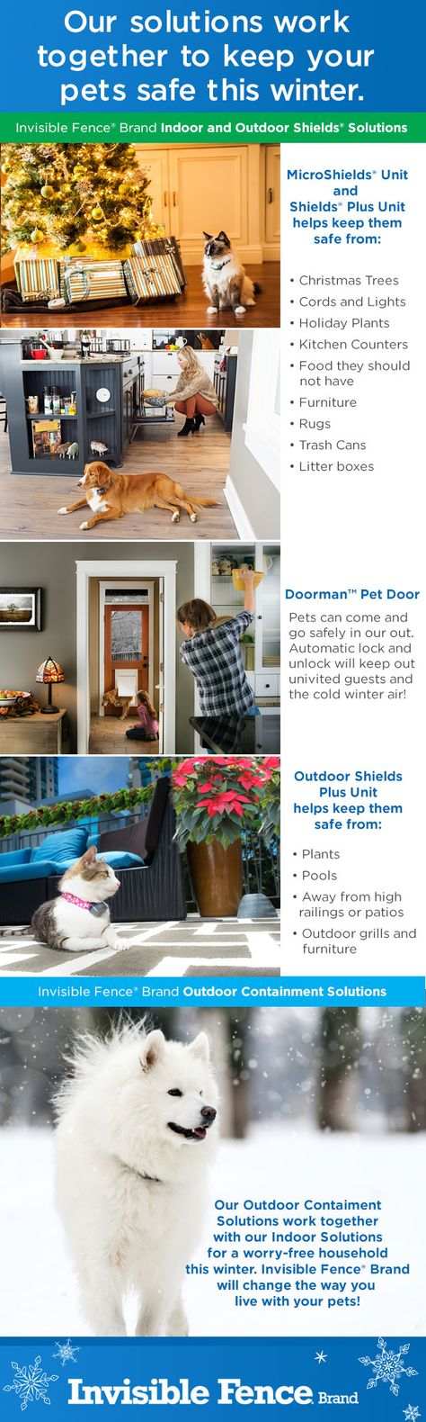 Pin By Invisible Fence Brand On Infographics Pet Safe Pet Door