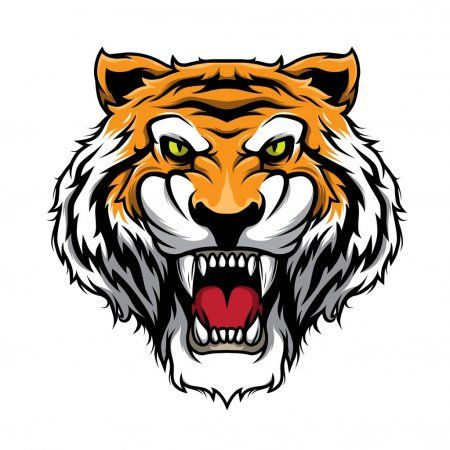 Roaring Tiger Head Illustration Vector Stock Vector Affiliate Head Tiger Roaring Stock Ad Tiger Head Illustration Cartoon Styles