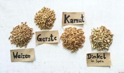 Getreidesorten für Grasanbau