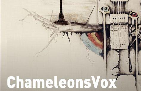 Chameleonsvox Farewell Tour On Pledge Music Music Post Punk Punk