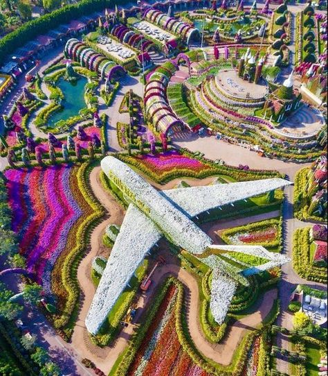 This is amazing! I wonder how long it took to create this? Replica of an Airbus made from over 5 million flowers at the Dubai Miracle Garden. Photography by Thank you for sharing! Dubai City, Dubai Uae, Abu Dhabi, Dubai Miracle Garden, Flower Power, Million Flowers, Dubai Garden, Naher Osten, Gardens Of The World