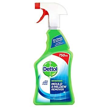 Dettol Mould Mildew Remover 750ml Housekeeping Mold And Mildew Remover Mildew Remover Mold And Mildew