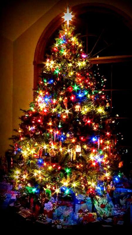 Christmas Eve Nylon Legs Colorful Christmas Tree Beautiful