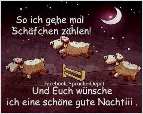 schönen abend und gute nacht bilder  #gutenachtbilder #schönenabendundgutenachtbilder #schönenabendundgutenachtbilderpics
