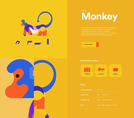 Animal app design by Ahn Na Yi