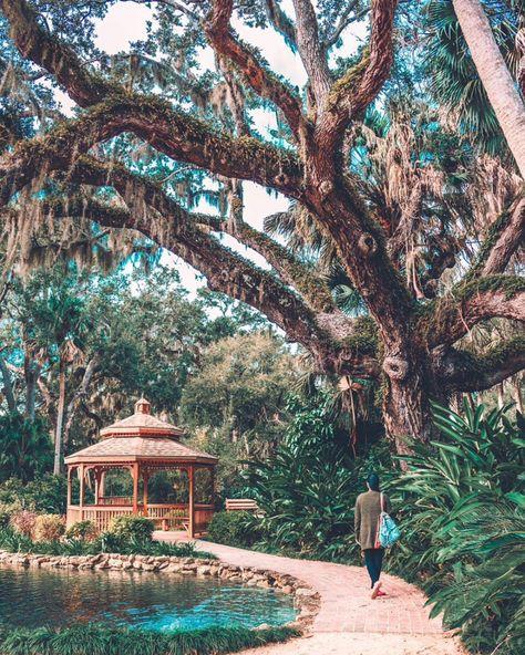 Florida Road Trip Destination Includes Washington Oaks State Park Near Orlando - Narcity Places In Florida, Old Florida, Florida Vacation, Florida Travel, Vacation Spots, Travel Usa, Palm Coast Florida, New Smyrna Beach Florida, Florida Trips