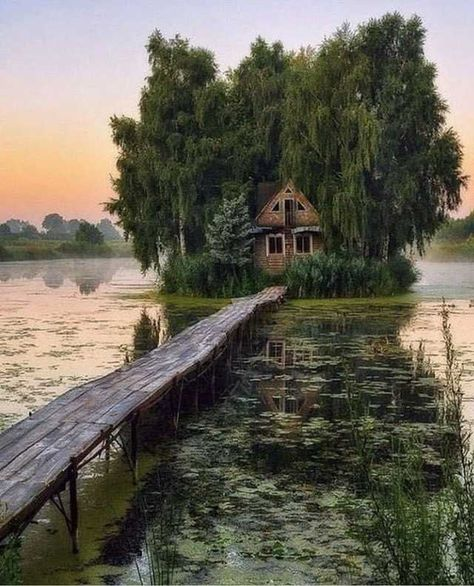 Abandoned swamp house in the morning More memes, funny videos and pics on Abandoned Mansions, Abandoned Houses, Abandoned Places, Into The Woods, Nature Aesthetic, Fantasy Landscape, Nature Photography, Landscape Photography, House Photography