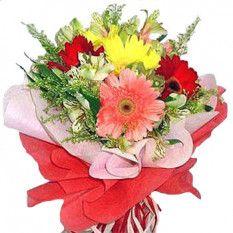 6 Gerbera Mélangé Bouquet De Fleurs Anniversaire Fleurs