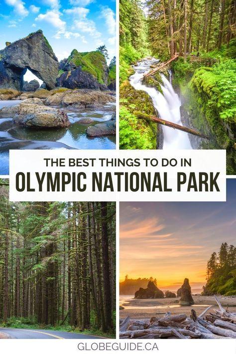 Olympic National Park Hikes, National Parks Usa, Western Washington, Hiking Washington State, Washington Apple, Washington Park, Forest Resort, Places To Travel, Travel Destinations