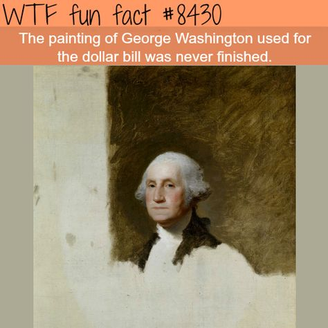 George Washington's unfinished painting - David Booker - Free Wow Facts, Wtf Fun Facts, True Facts, Funny Facts, Random Facts, Random Stuff, History Memes, History Facts, Art History