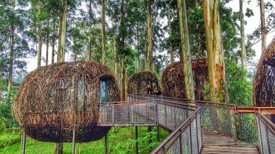 Lutung Kasarung Fasilitas Bangunan Unik Di Dusun Bambu Family Leisure Park Pemandangan Foto Wisata Liburan