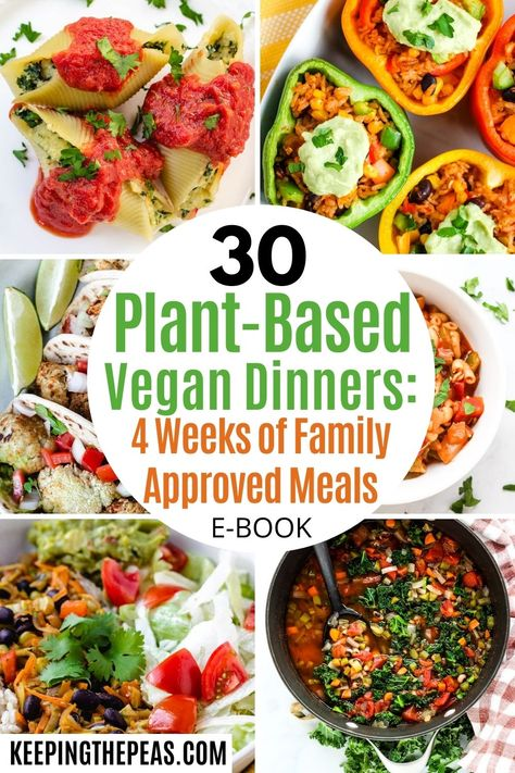 Wouldn't you like to have dinner planned for an entire month? You're in luck! I've done all the work for you! I know the struggle of getting dinner on the table every night. In my house the biggest challenge is making a meal that the whole family will eat, including my omnivore husband, and picky kids! This recipe e-book has 30 plant-based vegan dinners for 4 weeks of family approved meals, plus grocery shopping tips, meal planner, and grocery guide!