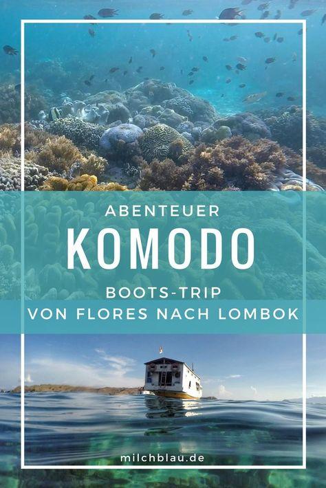 Türkisblaues Meer, fantastische Unterwasserwelten, einsame Strände und die berühmten Komodo-Warane hautnah erleben.