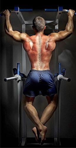 Back To Basics: Your Blueprint For Building A Bigger Back! - Bodybuilding.com
