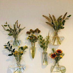Taylor Frech Wall Terrarium Glass Wall Vase Wall Vase
