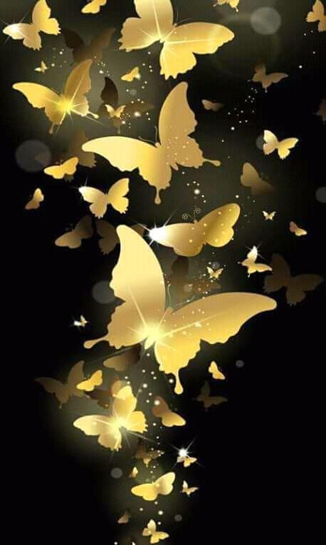 Poze Cu Artiști Lucruri Destinatii Animale Imagini De Fundal 1 Butterfly Wallpaper Funny Lock Screen Wallpaper Screen Wallpaper