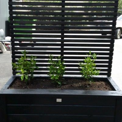 Planter Box With Trellis Screen, Tall Potted Plants Patio Privacy Nz