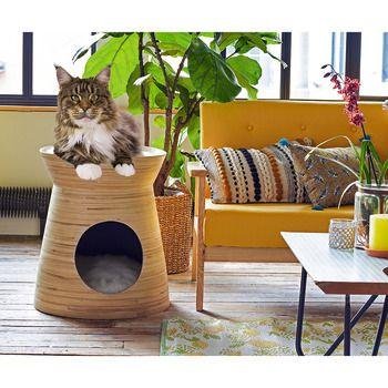 Maison Bambou Gris Klass L 50 Cm Son Mai Animalerie Truffaut Bambou Maison Chat Maison
