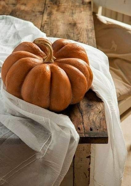 Pin By Becky Cagwin On Seasons Amazing Autumn Autumn Home Autumn Inspiration Pumpkin