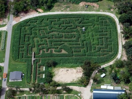 Take The Hassle Out Of Planning A Spring Break Getaway And Check Out Oyster Com S Top Picks For Family Friendly H Queens County Corn Maze Spring Break Getaways