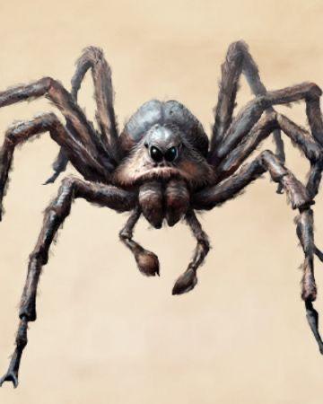 Stygian Spiders Animaux Fantastiques Les Animaux Fantastiques Dessin Araignee