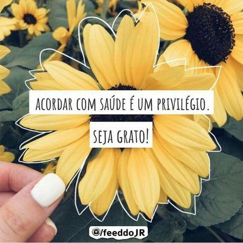 💭 #reflexao #sejagrato 🌻