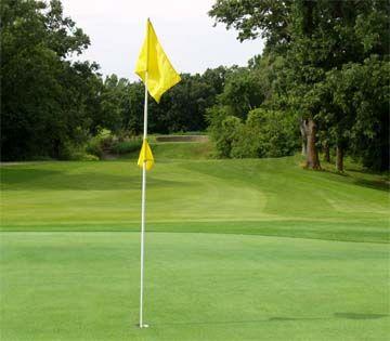 31++ Carefree golf ideas