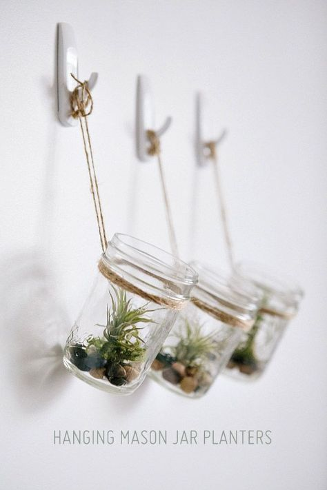 Terrarium suspendu dans une Mason Jar