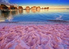 Cosas Bellas Del Mundo Búsqueda De Google Pink Sand Beach Pink Sand Beach Bahamas Bahamas Island