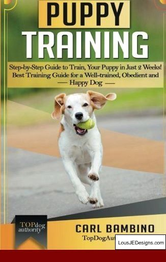 Best Way To Potty Train A Little Dog And Pics Of How To Teach