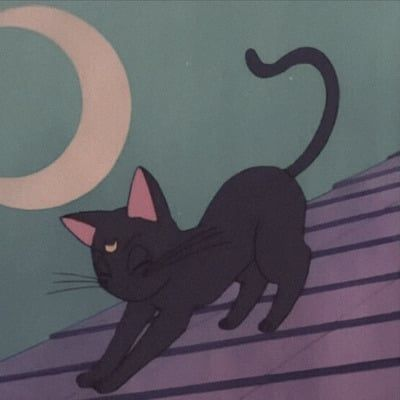 Anime Cats Pets Cute Sailor Moon Cat Aesthetic Anime Cat Icon