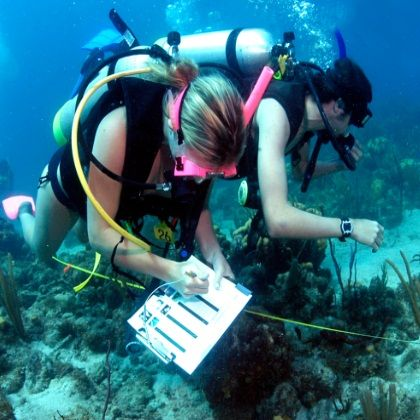 Calling all future marine biologists! Your students can speak to - marine biologist job description