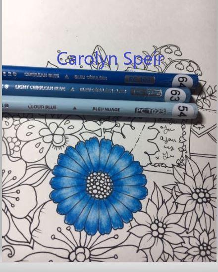 Colorist Carolyn Speir Buntstifte Bunt Stift
