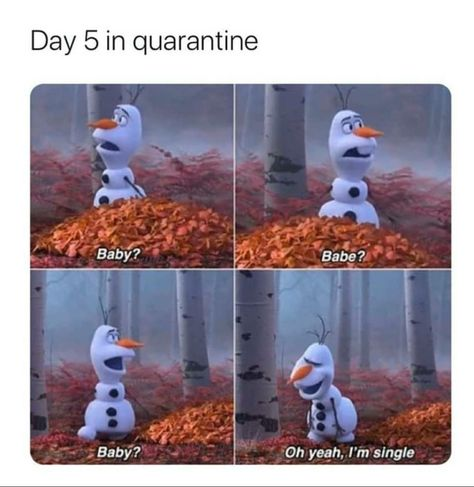 Single ready to mingle..but no dates out there | /r/memes | Quarantine Day X