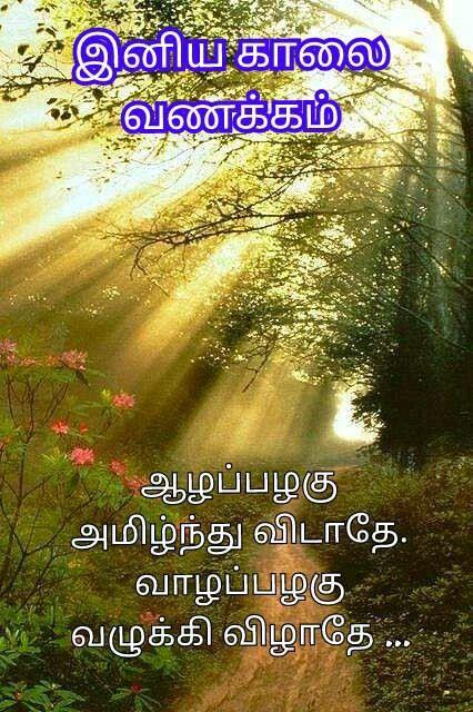 Pin By Devarajoo Narayanan On Tamil Good Morning Quotes Good Morning Quotes Morning Quotes Photo Album Quote