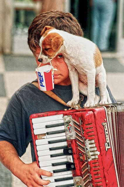 Accordian Player in Lisbon Portugal by Greg Weeks Photography, via Flickr