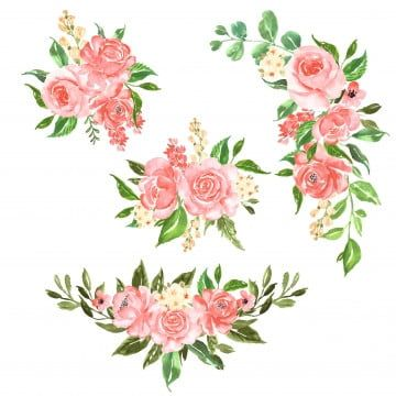 Set Of Beautiful Rose Pink Watercolor Flower Arrangement Watercolor Floral Rose Png And Vector With Transparent Background For Free Download In 2020 Pink Flowers Background Pink Watercolor Flower Pink Watercolor