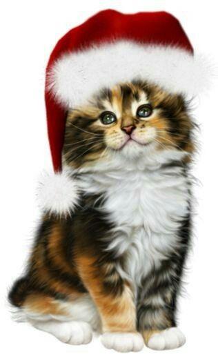 Pin On Animaux De Noel
